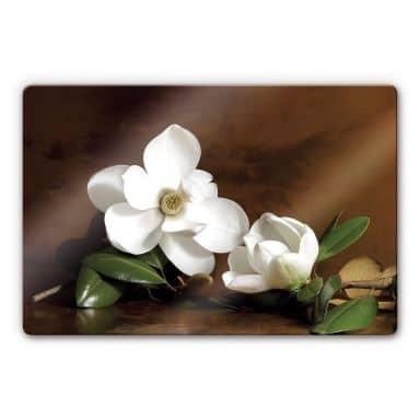 Glasbild Magnolienzweig mit Blättern