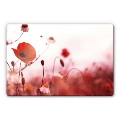 Poppy Impressions Glass art