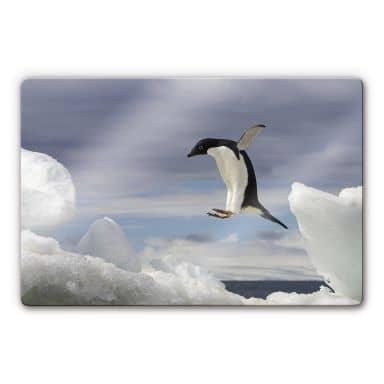 NG Pinguin Fly Glass art