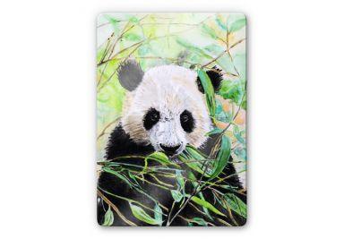Glasbild Toetzke - Pandabär
