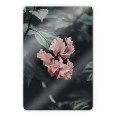 Glasbild Tropische Blüte