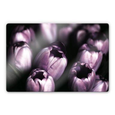 Glasbild Tulips