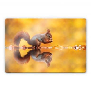 Glasbild van Duijn - Eichhörnchen mit Nuss