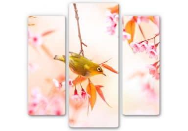 Glasbild Vogelgezwitscher in der Kirschblüte (3-teilig)