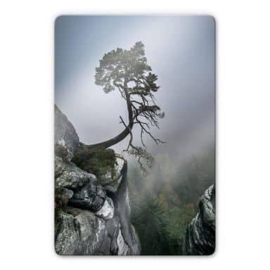 Glasbild Wonisch - Kräfte der Natur