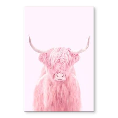 Stampa su vetro Fuentes - Highland Cow