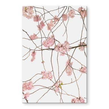 Glass Print Kadam - Cherry Blossom