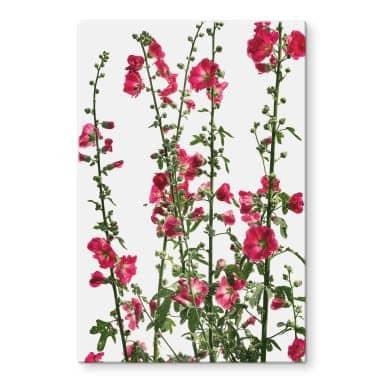 Glasschilderij Kadam - Flora Rose