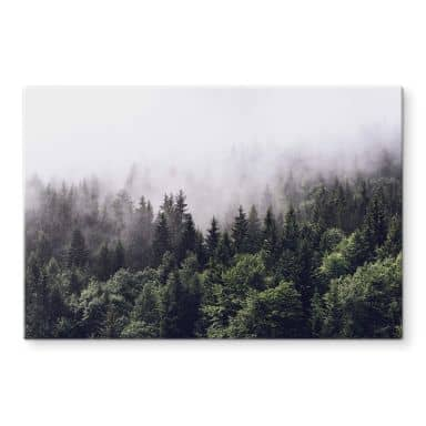 Glass Print Foggy Forest