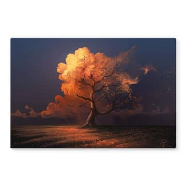 Glasbild aerroscape - Später Herbst