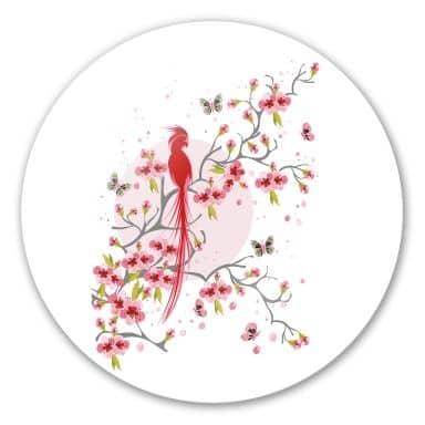 Glasbild Paradiesvogel - rund