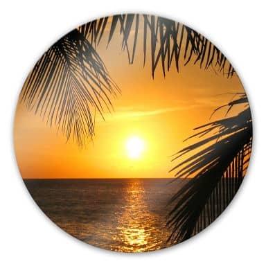 Glasbild Unter Palmen - rund