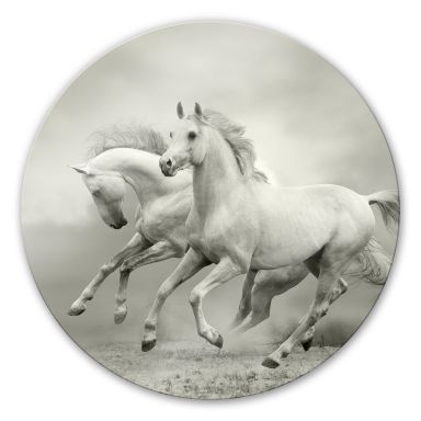Horses at a gallop Glass art - round