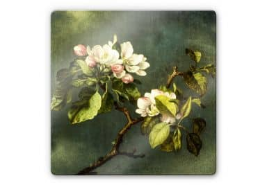 Glasbild Heade - Apfelblüten