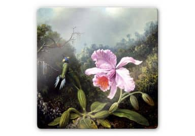 Glasbild Heade - Stillleben mit Orchidee und Kolibris