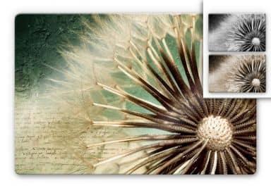Glasbild Pusteblumen-Poesie