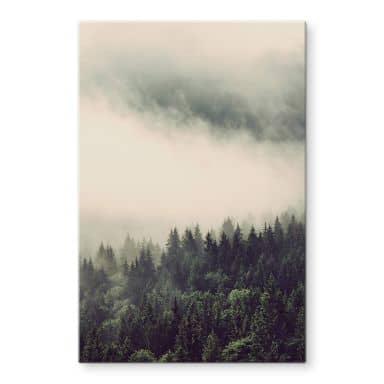 Glasbild Nebel im Wald 02