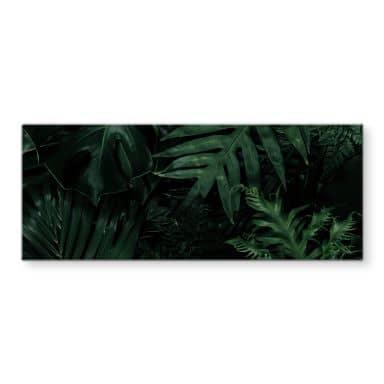 Tableau sur verre Jungle vert foncé  - Panorama