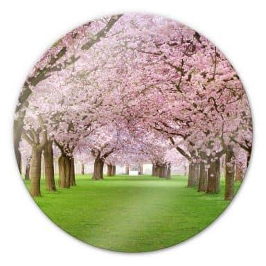 Stampa su vetro - Primavera - tondo