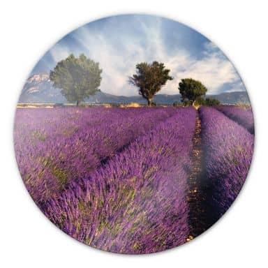 Lavender field Glass art - round