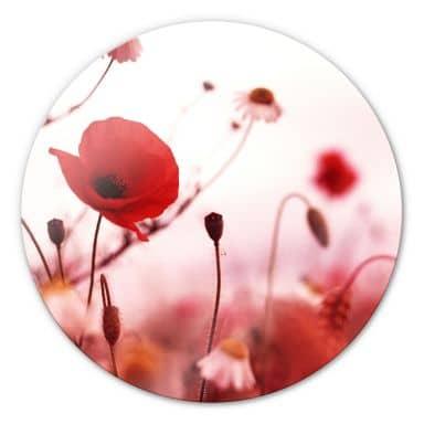 Poppies Impression Glass art - round