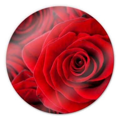Glasbild Rose - rund