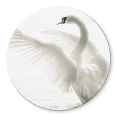 Majestic Swan Glass art - round