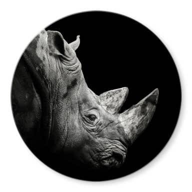 Glasbild Meermann - Das Nashorn - Rund