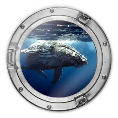 Glass Print round 3D optics - Humpback Whale
