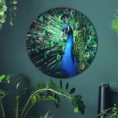 Beautiful Peacock - Round Glass art