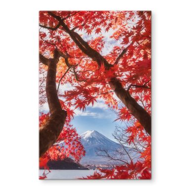 Glasbild Samejima - Rote Blätter