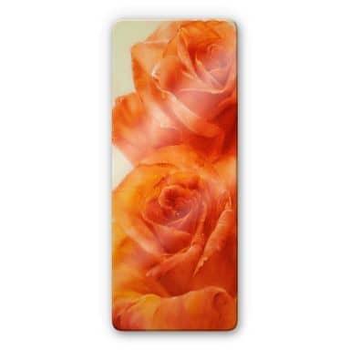 Glass Print Schmucker - Roses
