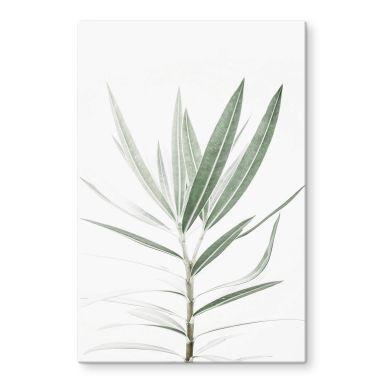 Glasschilderij Sisi & Seb - Oleander