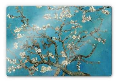 Glass Print van Gogh - Almond Blossom