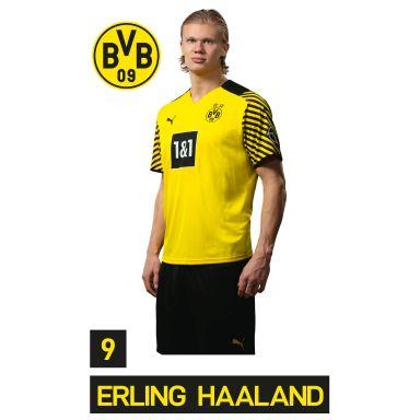 Muursticker BVB Speler Erling Haaland 2021