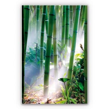 Forex print Bamboo Forest
