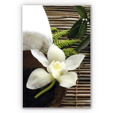 Forex print Wellness Orchid