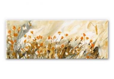 Wandbild Niksic - Morgenlicht