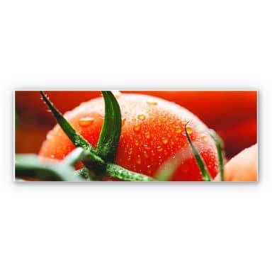 Wandbild Fresh Tomato - Panorama