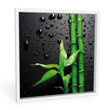 Wandbild Bamboo Over Black - quadratisch