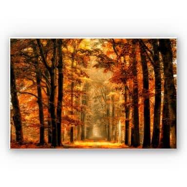 Wandbild van de Goor - Herbstallee