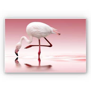 Wandbild Reindl - Pink Flamingo