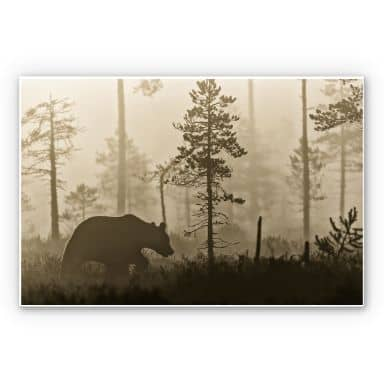 Wandbild Ove Linde - Nebel am Morgen