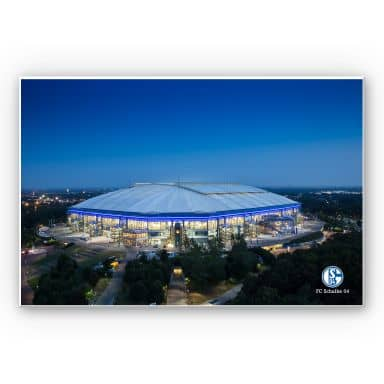 Wandbild Schalke Arena 02