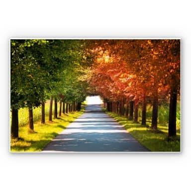 Wandbild Herbst