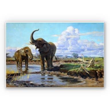 Wandbild Kuhnert - Elefanten an der Wasserstelle