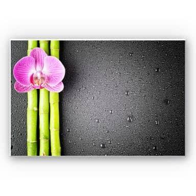 Wandbild Orchid and Bamboo
