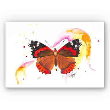 Wandbild Buttafly - Vanessa Athalanta