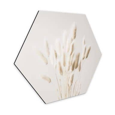Hexagon Dibond 1X Studio - Dry Grass