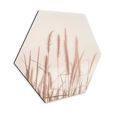 Hexagon Dibond Grass at Sea